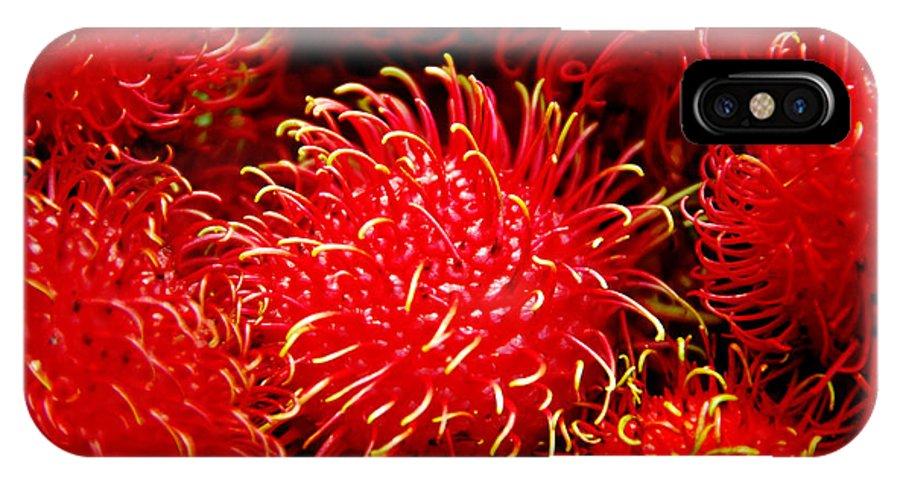 Rambutan Fruits IPhone X / XS Case featuring the photograph Rambutan by Dragica Micki Fortuna