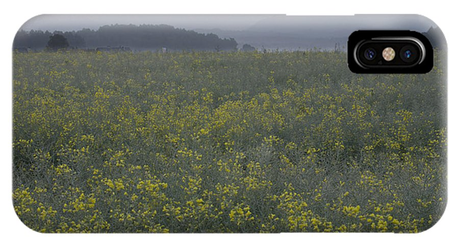 Brnik IPhone X Case featuring the photograph Rapeseed Dawn by Ian Middleton