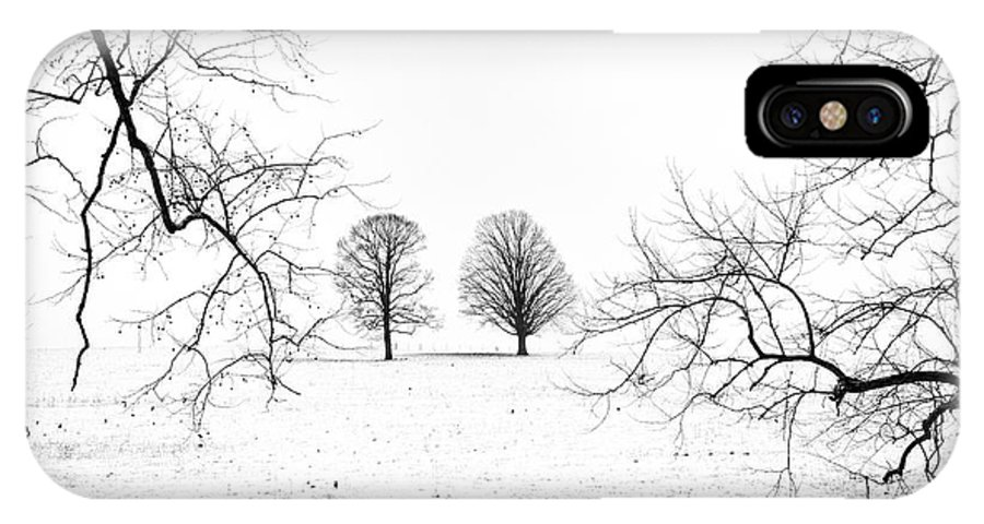 Trees IPhone X Case featuring the photograph Reaching For The Top by Darrell Young