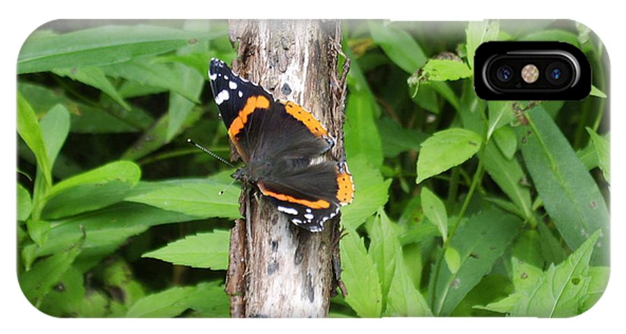 Red Admiral Butterfly Images Red Admiral Butterfly Photograph Prints American Butterflies Entomology Forest Ecosystem Forest Habitat Nature Biodiversity Butterfly Species Orange And Black Butterfly Images Pictures IPhone X Case featuring the photograph Red Admiral Butterfly by Joshua Bales
