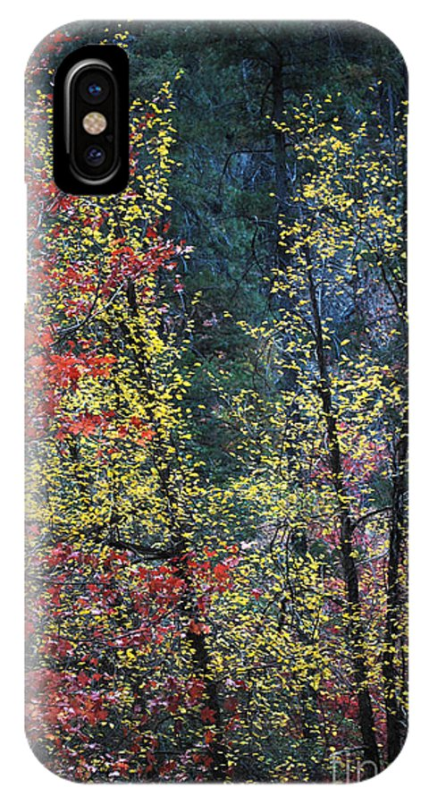 Landscape IPhone X Case featuring the photograph Red And Yellow Leaves Abstract Vertical Number 2 by Heather Kirk