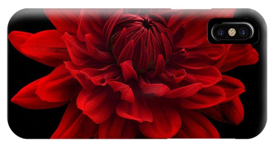 Red Dahlia Flower Black Background Iphone X Case