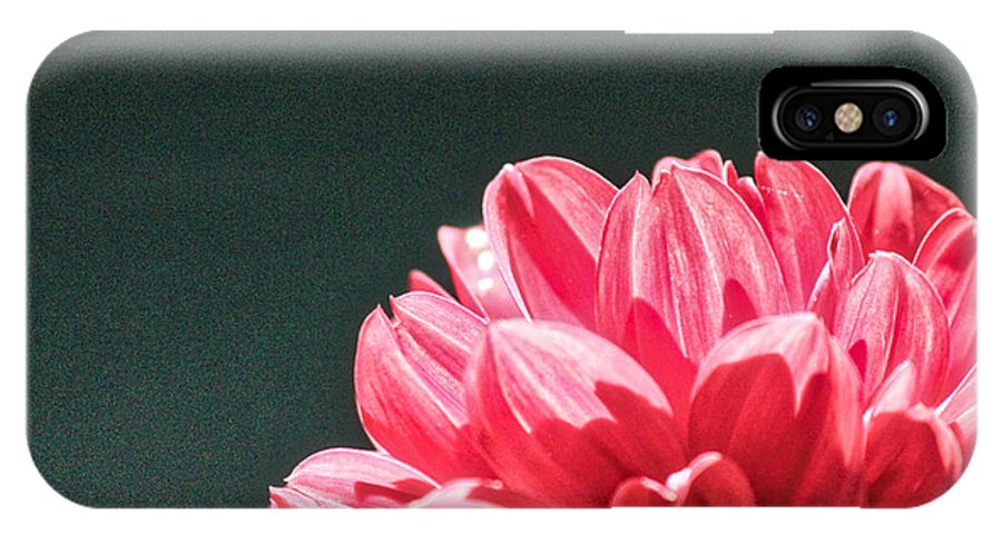 Dahlia IPhone X Case featuring the photograph Red Dahlia by Karin Everhart
