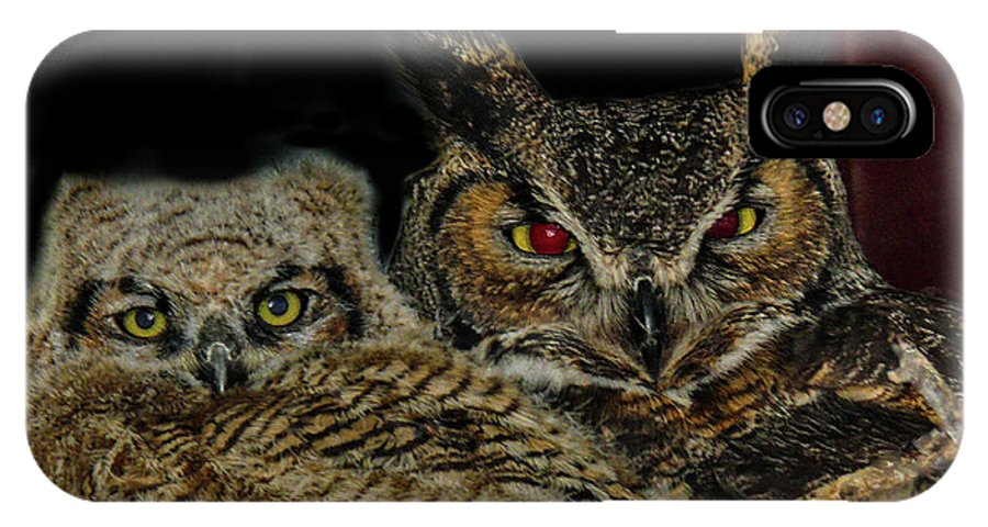 Great Horned Owls IPhone X Case featuring the photograph Red Eyed Mama And Baby Horned Owls by Elizabeth Hershkowitz