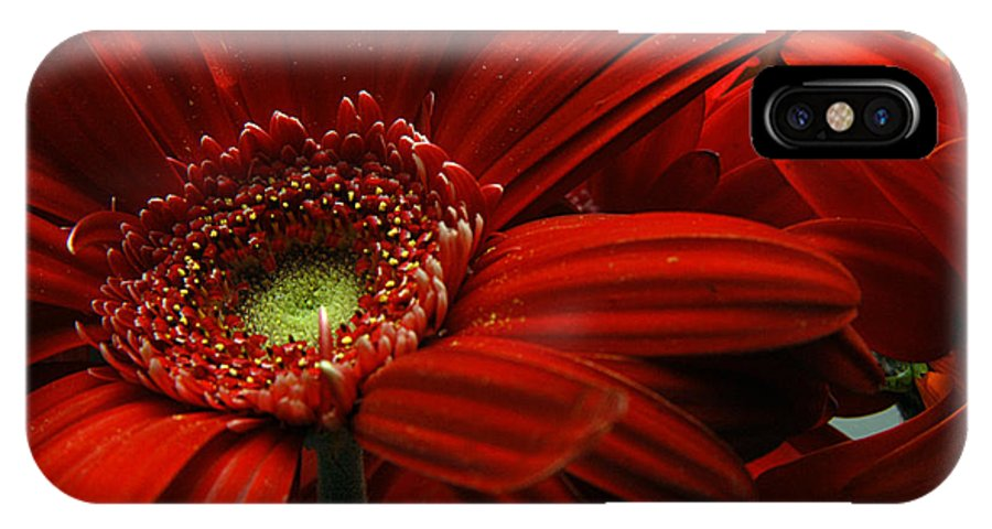 Clay IPhone X Case featuring the photograph Red Floral by Clayton Bruster