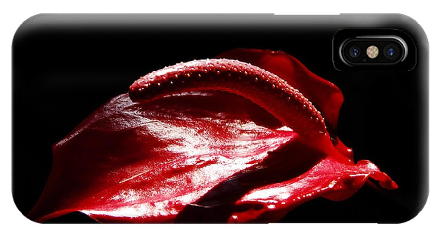 Red Flower IPhone X Case featuring the photograph Red Flower by David Lee Thompson