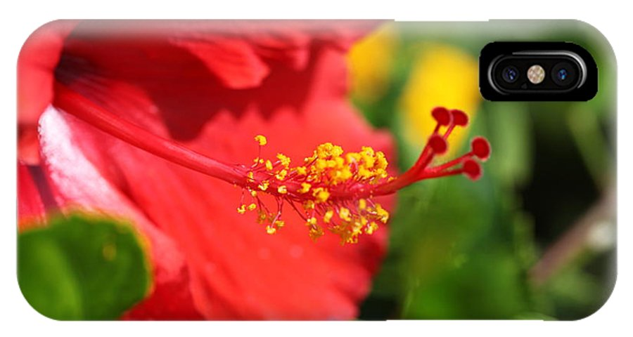Flowers IPhone X Case featuring the photograph Red Hibiscus And Green by Nadine Rippelmeyer
