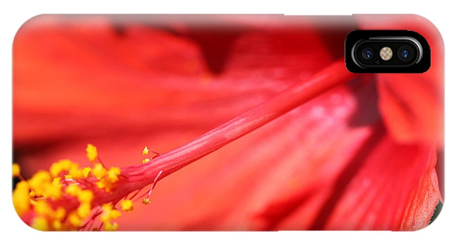 Red IPhone Case featuring the photograph Red Hibiscus by Nadine Rippelmeyer