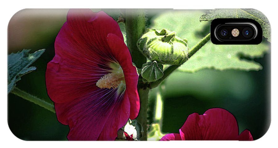 Red IPhone X Case featuring the photograph Red Hollyhock 1360 H_2 by Steven Ward