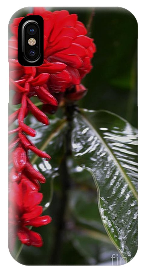 Costa Rica IPhone X Case featuring the photograph Red Lava Flower by Daniel Shearer