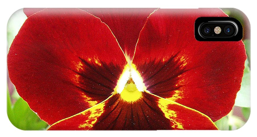Red IPhone X Case featuring the photograph Red Pansy by Nancy Mueller