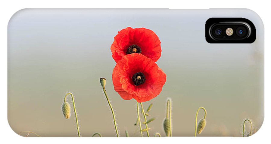 Angle IPhone X Case featuring the photograph Red Poppies couple by Adrian Bud