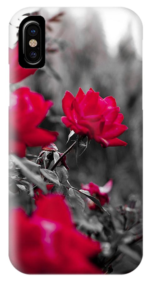 Red IPhone X Case featuring the photograph Red Roses by Dustin K Ryan