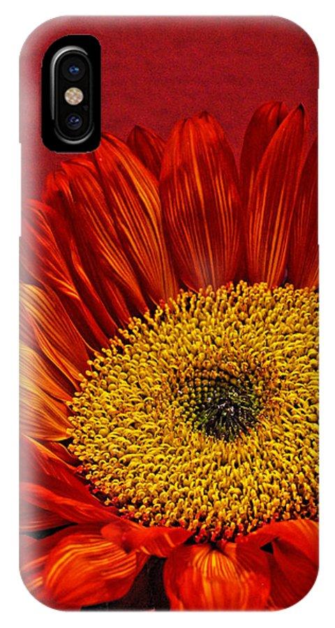 Red Sunflower IPhone X Case featuring the photograph Red Sunflower Viii by Saija Lehtonen