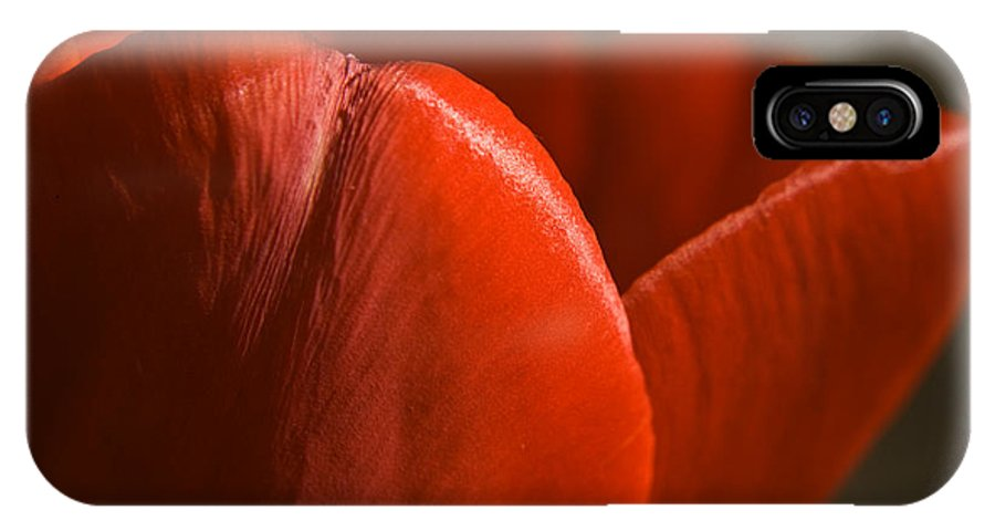 Tulip IPhone X Case featuring the photograph Red Tulip Up Close by Teresa Mucha
