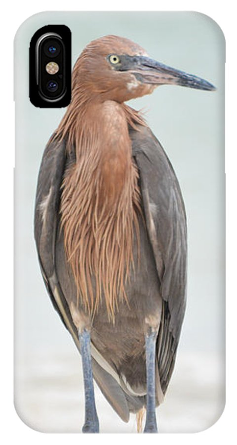 Egret IPhone X Case featuring the photograph Reddish Egret Stands Tall by Benjamin Andersen