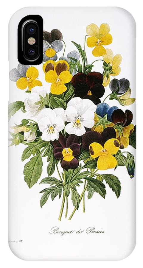 1833 IPhone X Case featuring the photograph Redoute: Pansy, 1833 by Granger