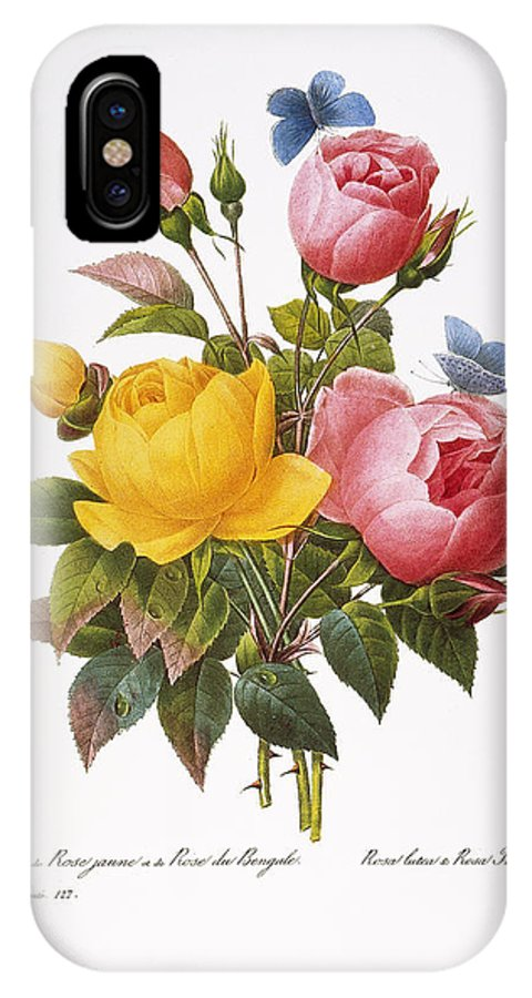 1833 IPhone X Case featuring the photograph Redoute: Roses, 1833 by Granger