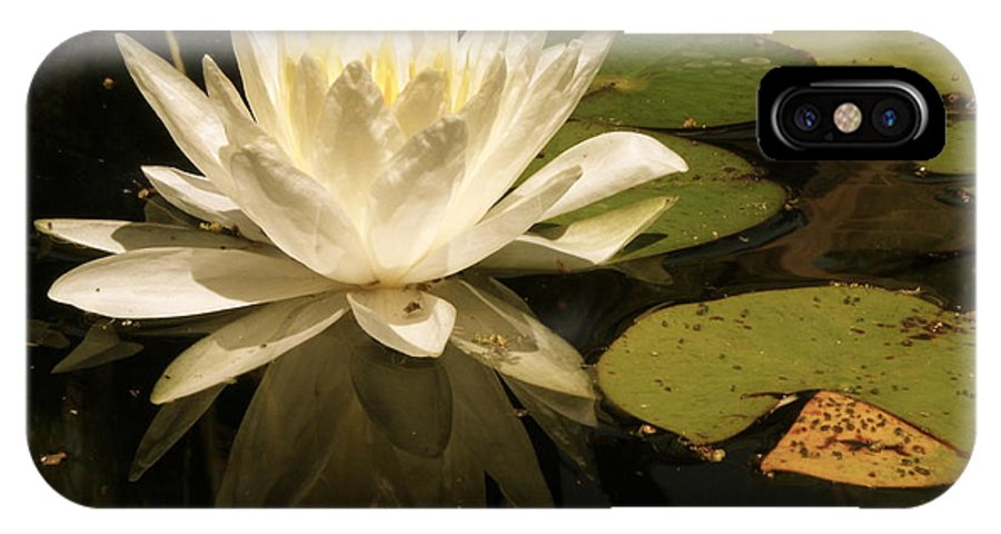 Lotus IPhone X Case featuring the photograph Reflection by Elizabeth Ren
