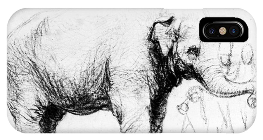 1637 IPhone X Case featuring the photograph Rembrandt: Elephant, 1637 by Granger