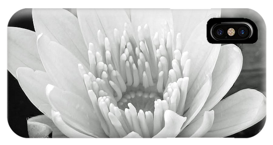 Water Lily IPhone X Case featuring the photograph Remember When II by Melanie Moraga