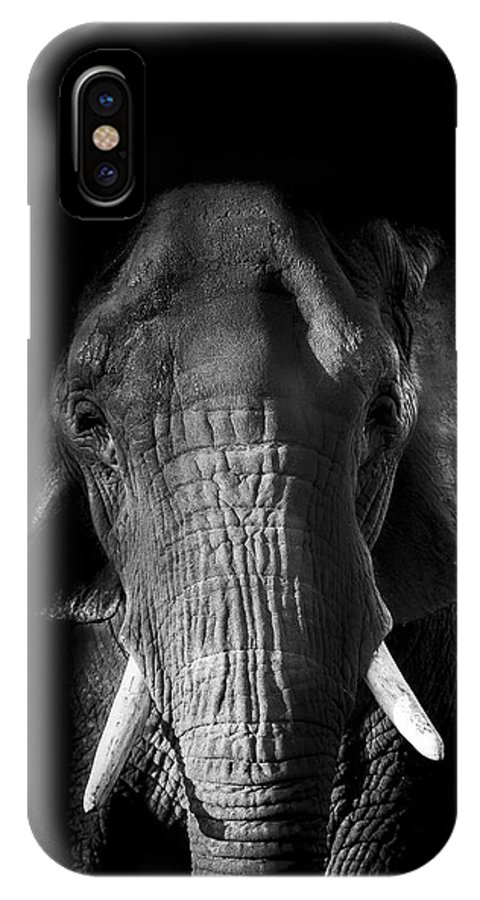 Elephant IPhone X Case featuring the photograph Remembrance by Paul Neville