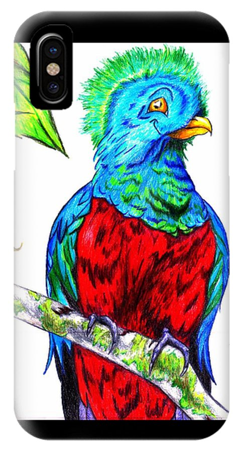 Bird IPhone X Case featuring the drawing Resplendent by Bryant Lamb