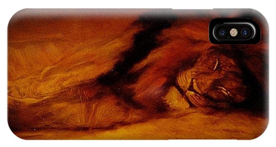 Animals IPhone X Case featuring the painting Resting Lion by Arlene Rabinowitz