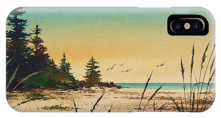 Shore IPhone X Case featuring the painting Return To The Shore by James Williamson
