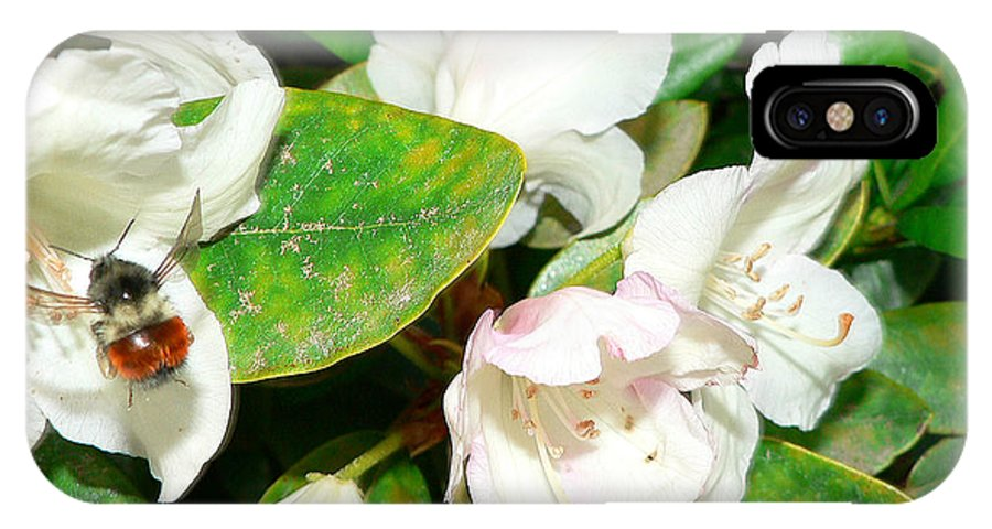 Bee IPhone X Case featuring the photograph Rhododendron and Bee by Larry Keahey