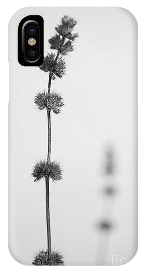 Dry IPhone X Case featuring the photograph Rhythm by Gabriela Insuratelu