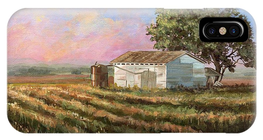 Texas IPhone X Case featuring the painting Rich Morning by Mona Davis