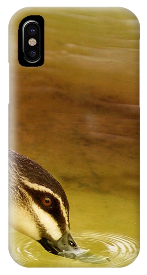 Animals IPhone Case featuring the photograph Ripples by Holly Kempe