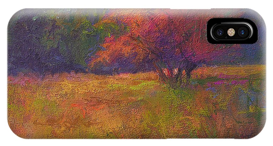 Landscape IPhone X Case featuring the painting River Road Above New Hope by Susan Williamson