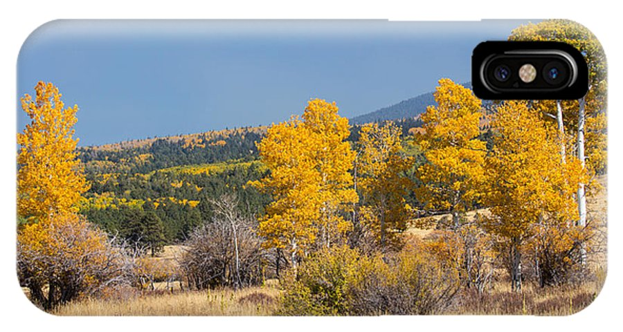 Fall IPhone X Case featuring the photograph Road To Hart Prairie by Susan Westervelt