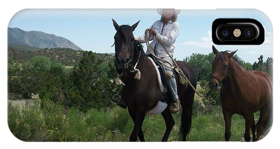 Horses IPhone Case featuring the photograph Roadside Horses by Anita Burgermeister
