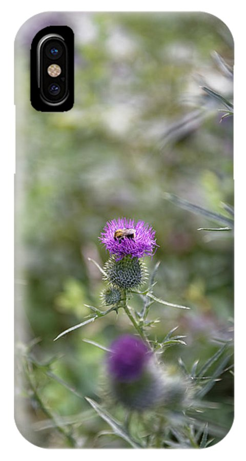Autumn IPhone X Case featuring the photograph Roadside Thistle Bee Polination by Adrian Bud