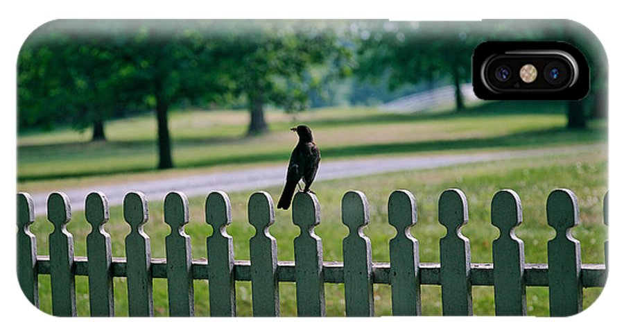 Bird IPhone X Case featuring the photograph Robin On A Fence by Lone Dakota Photography