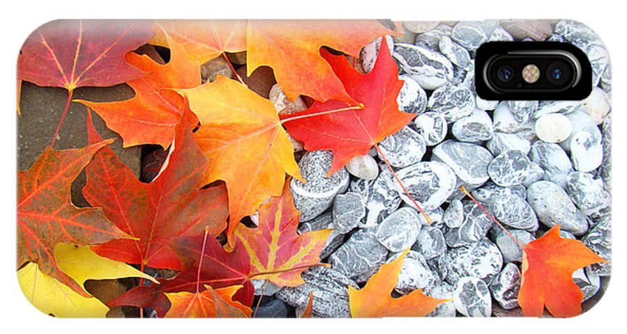 Autumn IPhone X Case featuring the photograph Rock Garden Autumn Leaves by Baslee Troutman