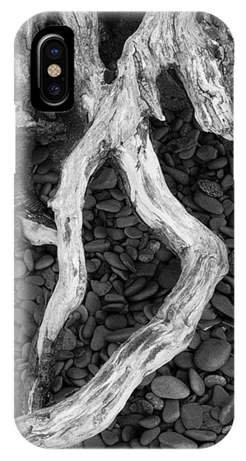 Landscape IPhone X Case featuring the photograph Roots by Abhishek Dasgupta