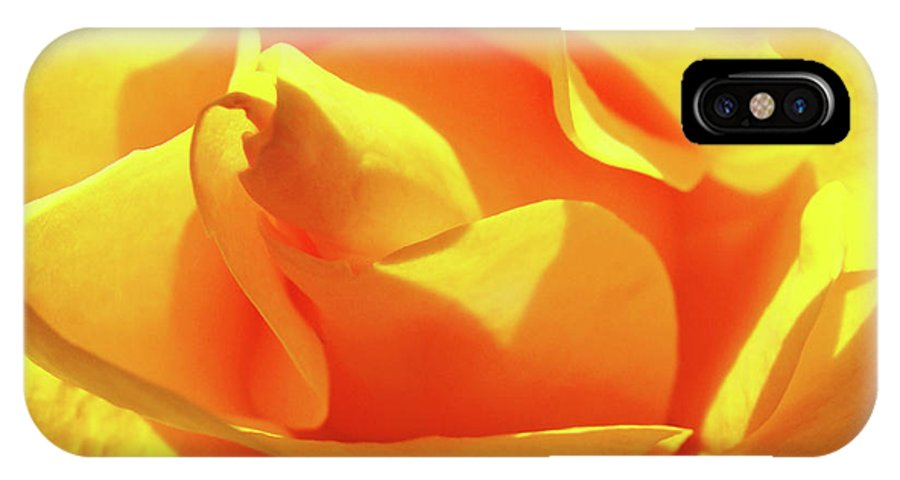 Rose IPhone X Case featuring the photograph Rose Bright Orange Sunny Rose Flower Floral Baslee Troutman by Baslee Troutman