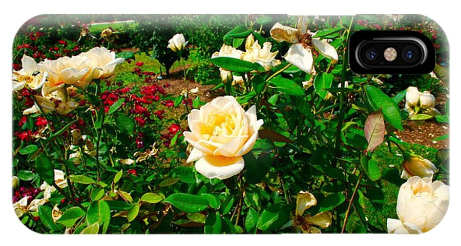 Rose Gardens IPhone X Case featuring the photograph Rose Gardens by Bennett Thompson