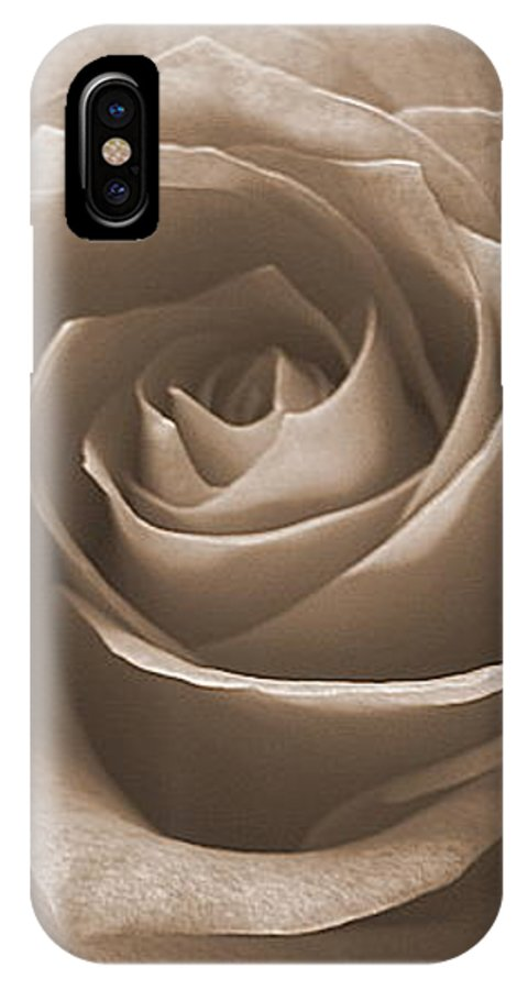 Rose Sepia Pedals IPhone X Case featuring the photograph Rose In Sepia by Luciana Seymour