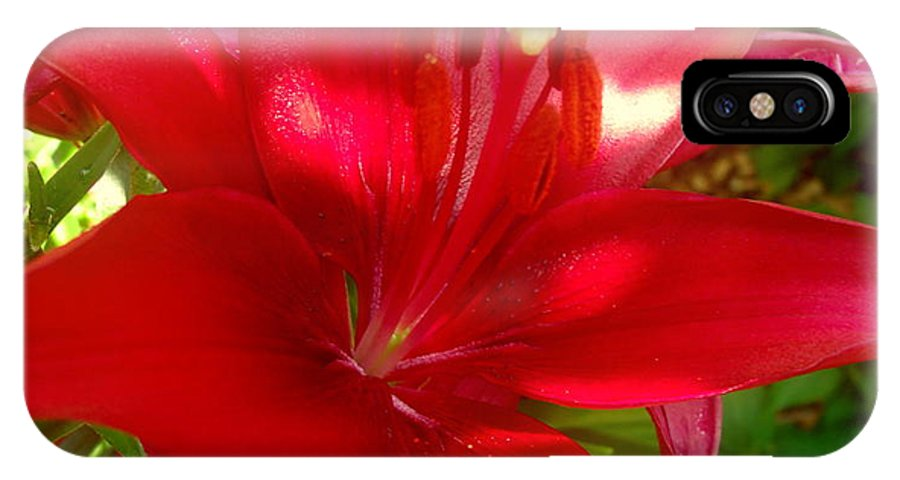 Lily IPhone X Case featuring the photograph Rose Pink Lily by Erin Rednour