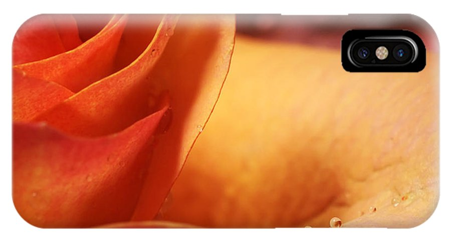 Flower IPhone X Case featuring the photograph Rose by Silvia Ganora