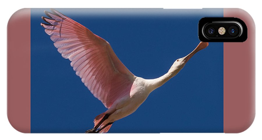 Roseate Spoonbill IPhone X Case featuring the photograph Roseate Flight by Jurgen Lorenzen