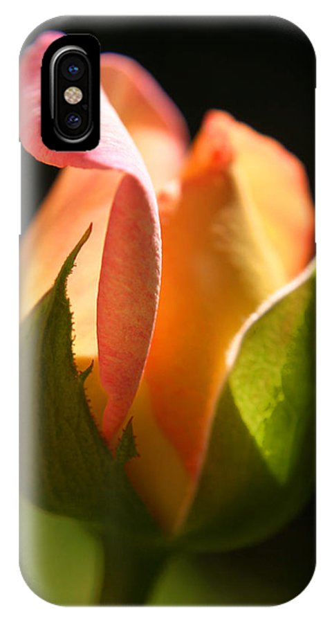 Rosebud IPhone X Case featuring the photograph Rosebud by Ralph A Ledergerber-Photography