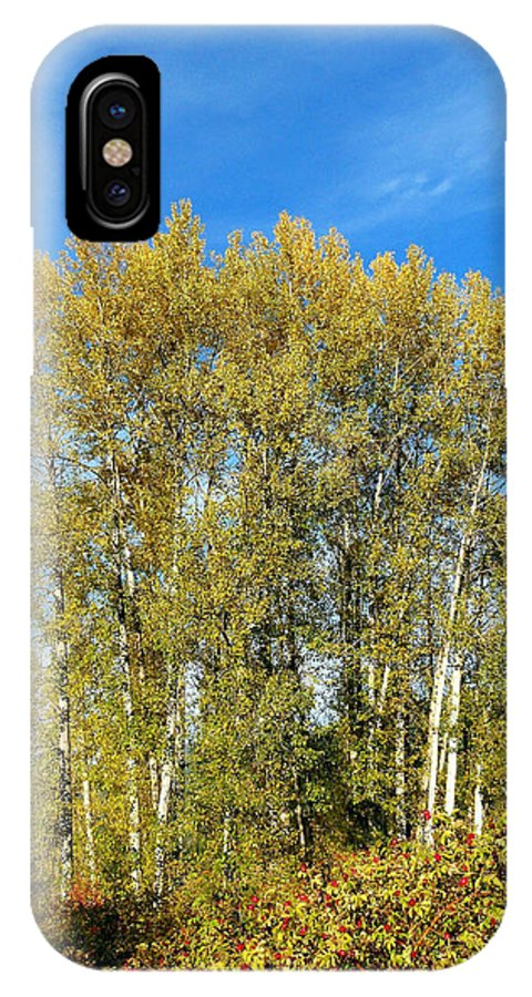 #rosehipsandcottonwoods IPhone X Case featuring the photograph Rosehips And Cottonwoods by Will Borden