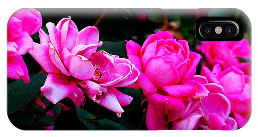 Everett Spruill IPhone X / XS Case featuring the photograph Roses 2 by Everett Spruill