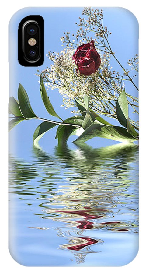 Roses IPhone X Case featuring the photograph Rosy Reflection by Gravityx9  Designs